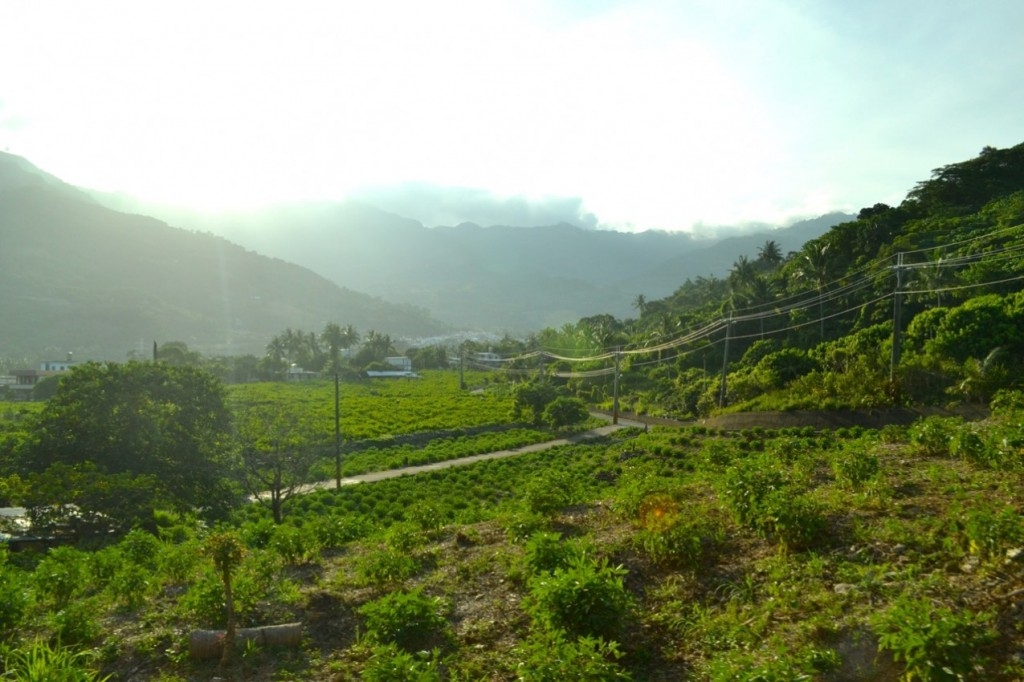 Taiwan countryside