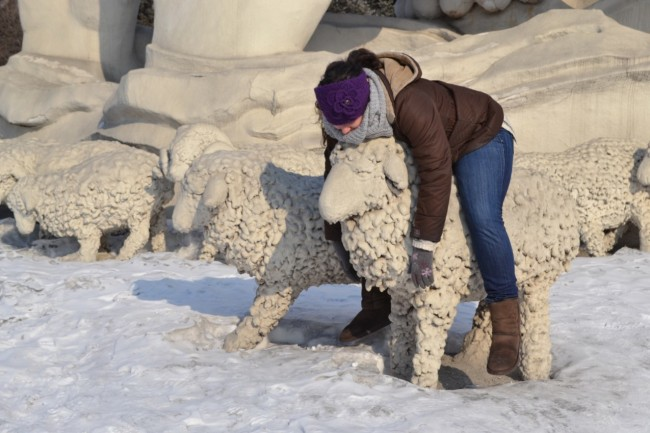 Harbin snow and ice festival sheep