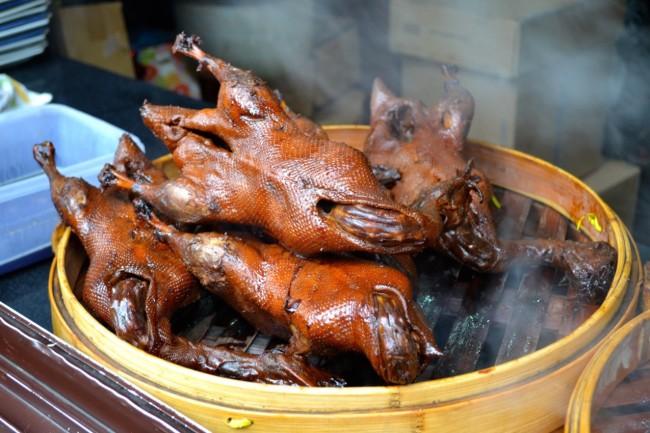 Chinese duck