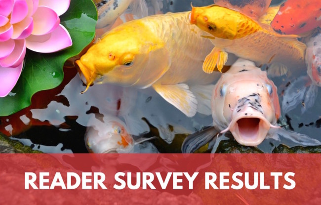 2015 Reader Survey Results: Who Are You People?
