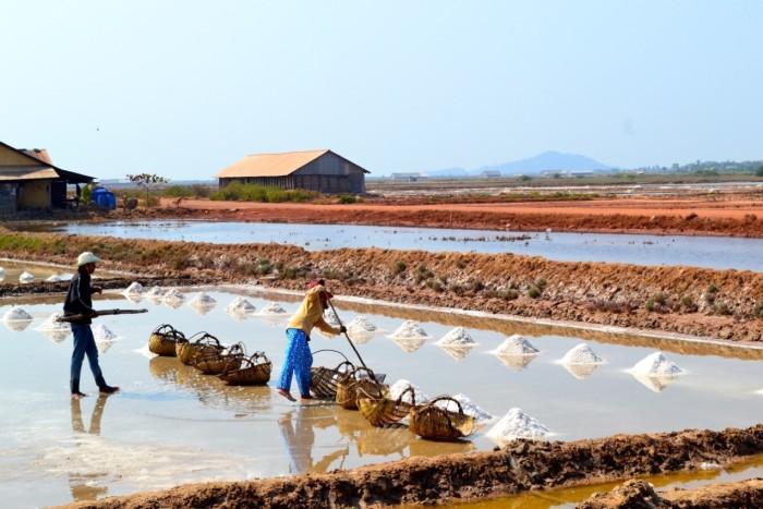 salt flats Kampot