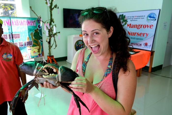 Mangrove crabs Siargao