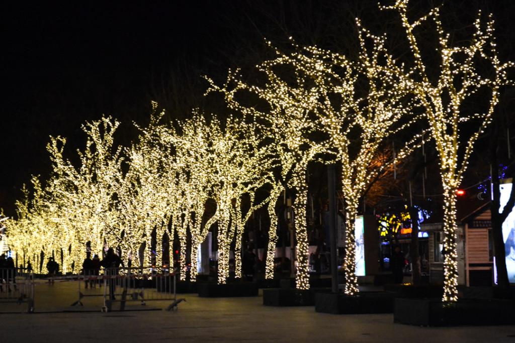 Sanlitun lit trees