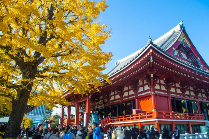 Expectations vs. Reality: Why I Didn't Love Japan's Tourist Trail